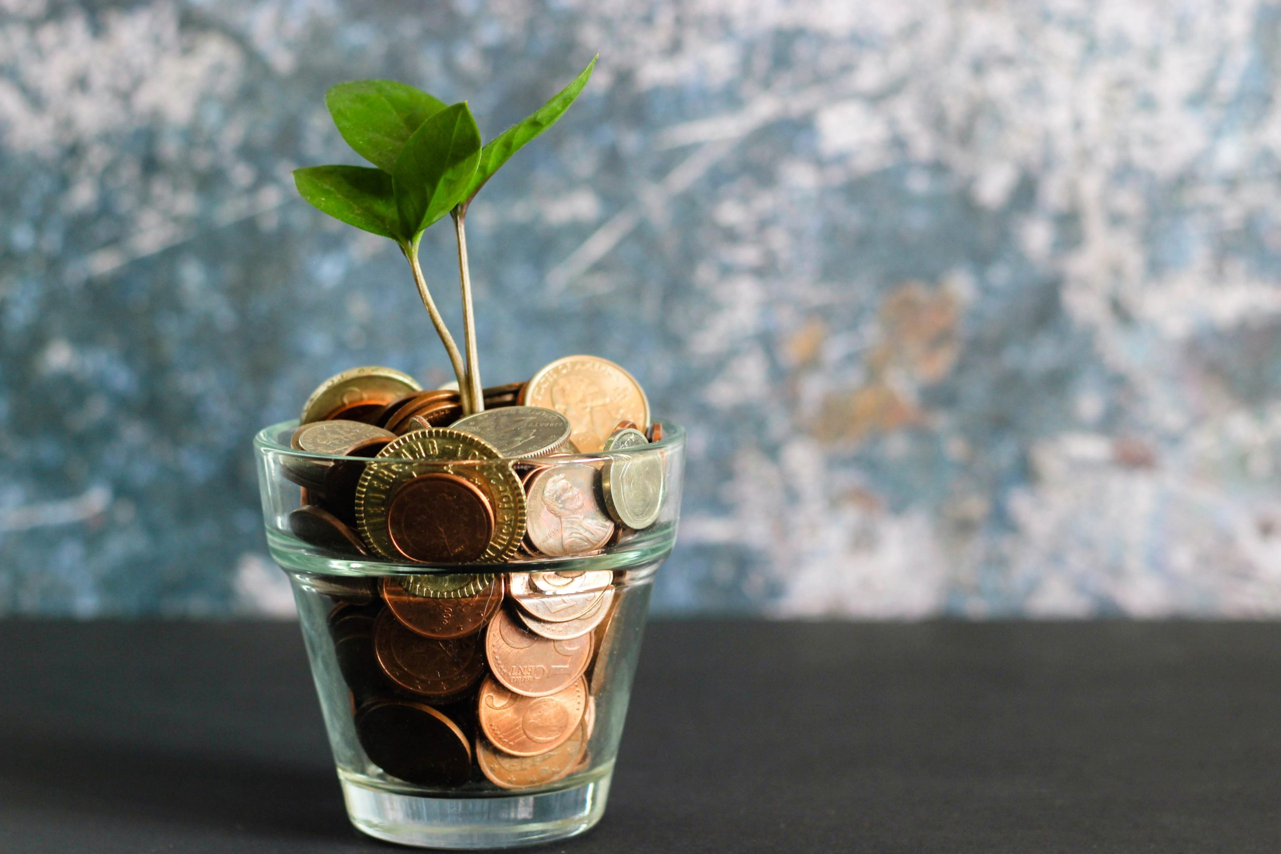 Create a Place Where Fundraisers Thrive